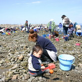 Shellfish gathering
